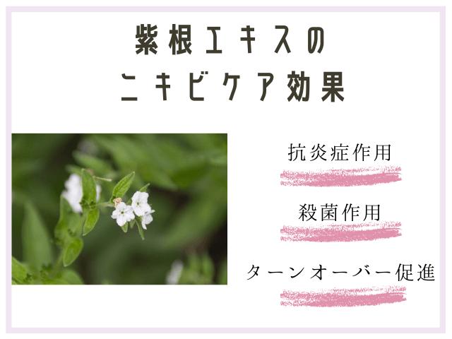 紫根エキス ニキビ